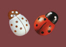 coccinelles-stickers