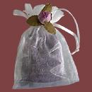 violettes-pays-oc