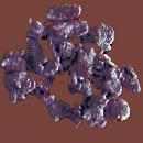 violettes-vrac